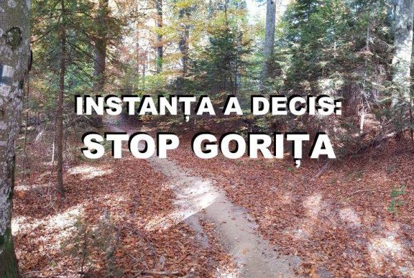 Gorita